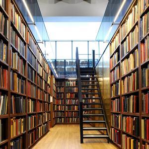 Библиотеки Богатого